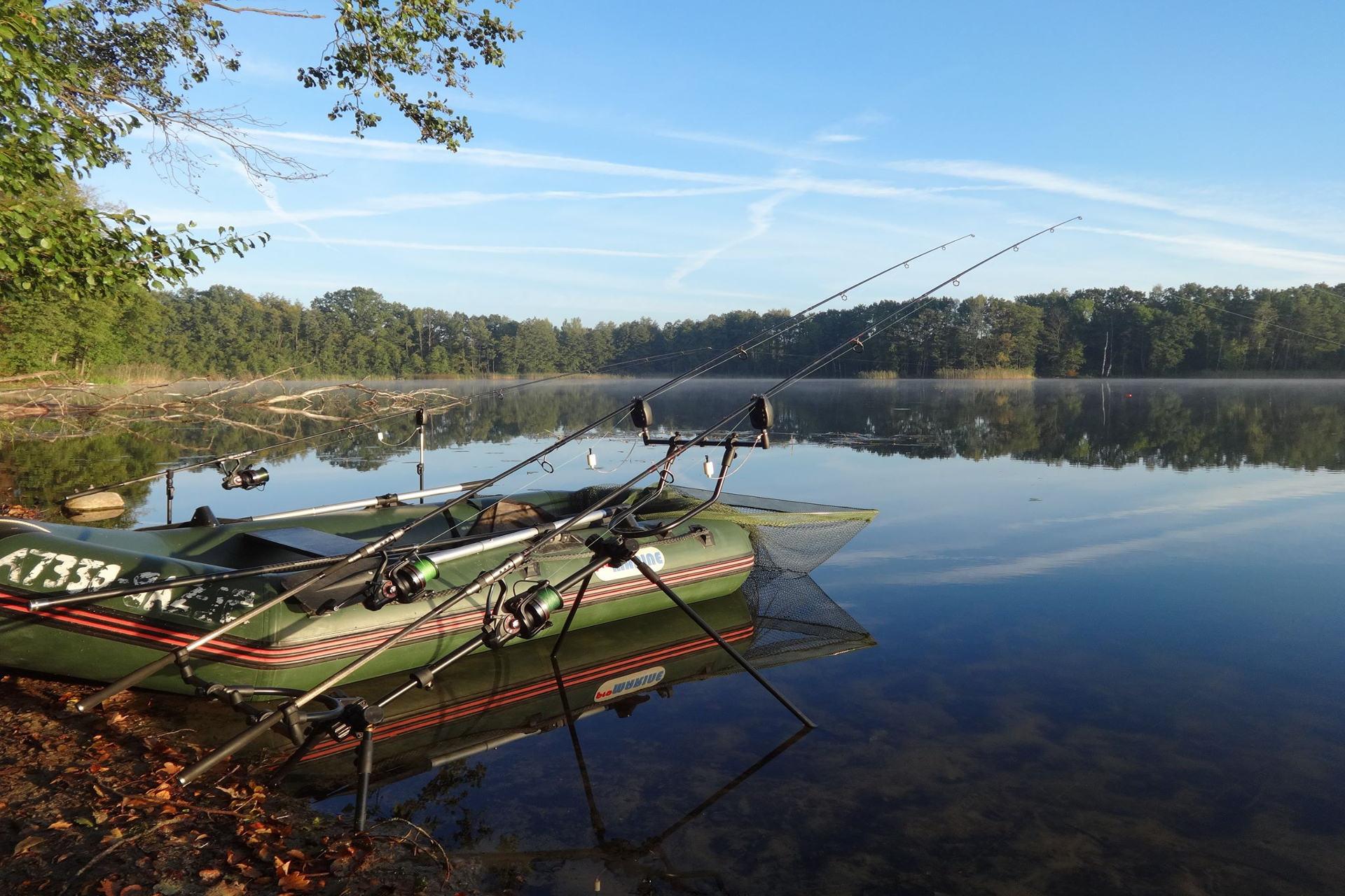 panorama jezioro leśne