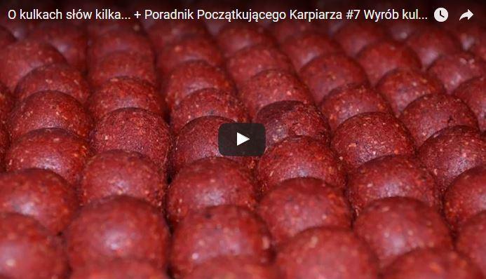 jak zrobić własne kulki karpiowe