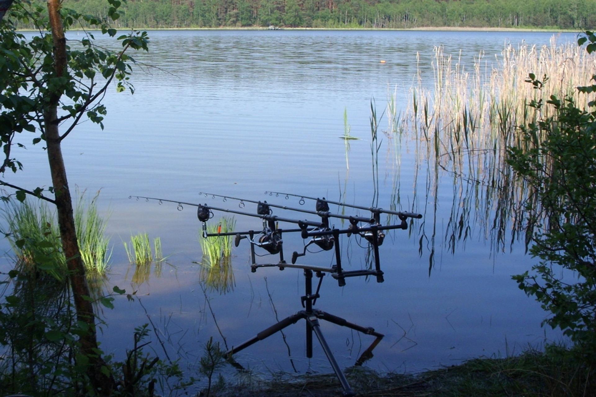 widok łowisko tuszynek